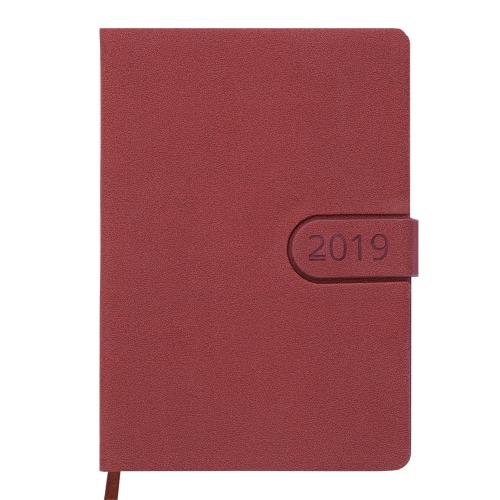 Ежедневник датированный 2019 SOLAR, A5, 336стр. коричневый