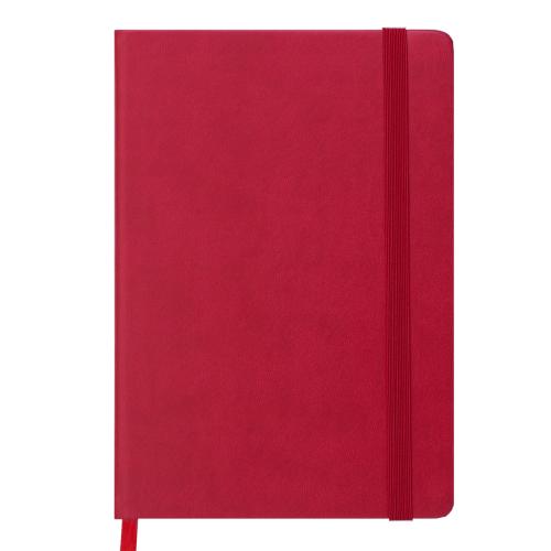 Ежедневник датированный 2019 CONTACT, A5, 336 стр., красный