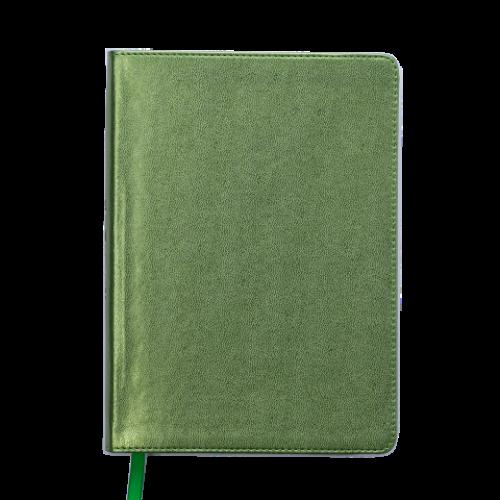 Ежедневник датированный 2019 METALLIC, A5, зеленый