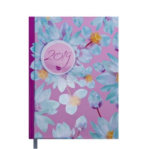 Ежедневник датированный 2019 ESTILO, A5, 336 стр., малиновый