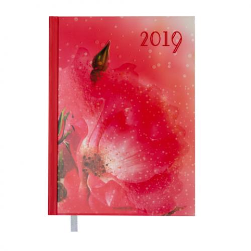 Ежедневник датированный 2019 SPOLETO, A5, 336 стр., коралловый