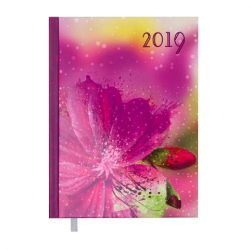 Ежедневник датированный 2019 SPOLETO, A5, 336 стр., малиновый