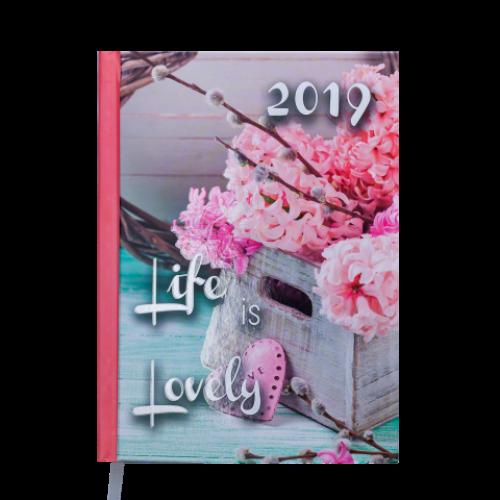 Ежедневник датированный 2019 ROMANTIC, A5, 336 стр., св.-розовый