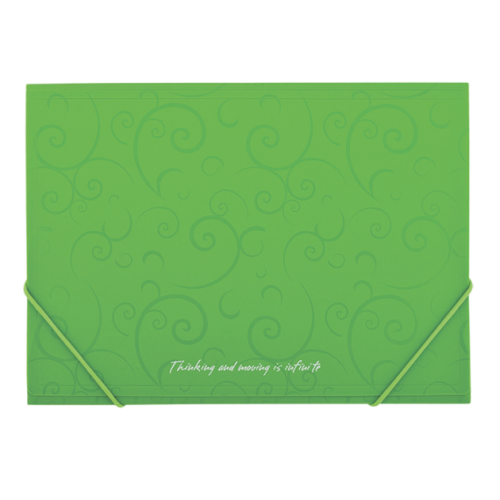 Папка пластиковая А4 на резинках, BAROCCO, салатовый