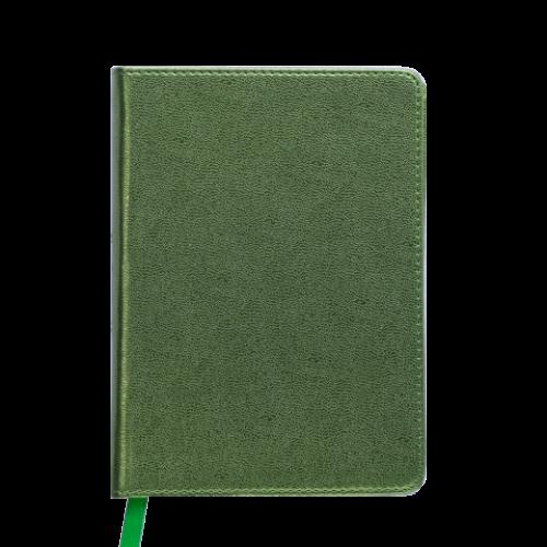 Ежедневник датированный 2019 METALLIC, A6, зеленый